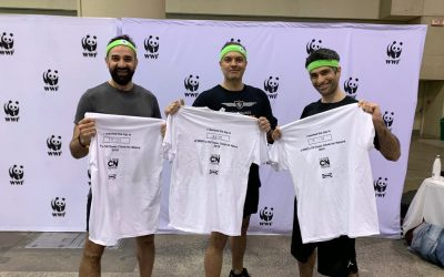 WWF's CN Tower Climb for Nature